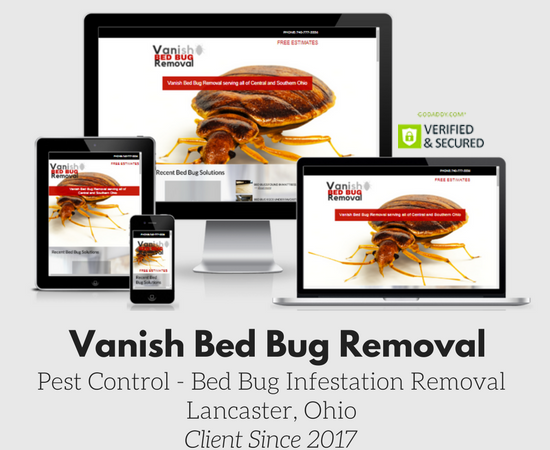 Vanish bed Bug Removal