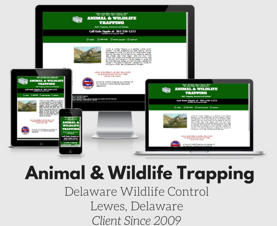 Animal Wildlife trapping